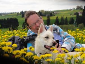Wiese bei Buchenberg: Mann und Hund umgeben von tausend Sonnen.