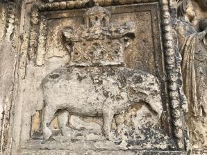 Der indische Elefant